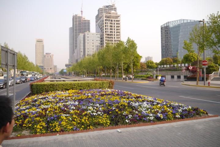 道端の花壇